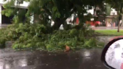 El huracán se intensificó hasta la categoría 2 durante las últimas horas en aguas del Pacífico. (Fotos: Captura de pantalla/Cortesía)