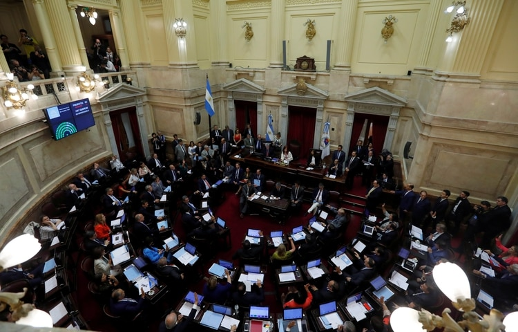 El Senado debate la ley de emergencia (Foto: Reuters)