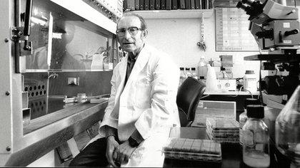 El doctor será homenajeado en plena pandemia del coronavirus (Shutterstock)