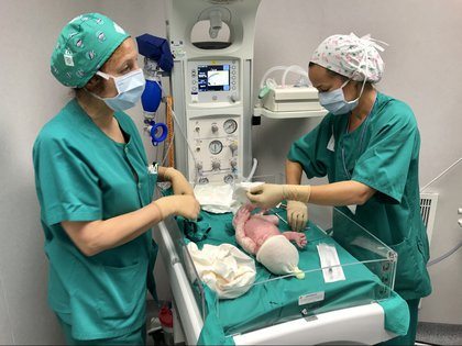04/12/2020 Dos sanitarias atienden a un bebé recién nacido en Almería SOCIEDAD ANDALUCÍA ESPAÑA EUROPA ESPAÑA EUROPA ALMERÍA ANDALUCÍA AUTONOMÍAS SALUD JUNTA DE ANDALUCÍA