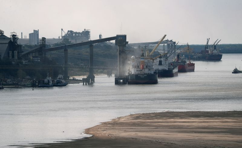 Granos son cargados a barcos en un puerto sobre el río Paraná cerca de Rosario (REUTERS/Agustin Marcarian)
