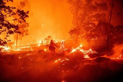 Un bombero trabaja en la escena mientras las llamas avanzan hacia las casas durante el incendio de Creek en el área de Cascadel Woods (JOSH EDELSON / AFP)