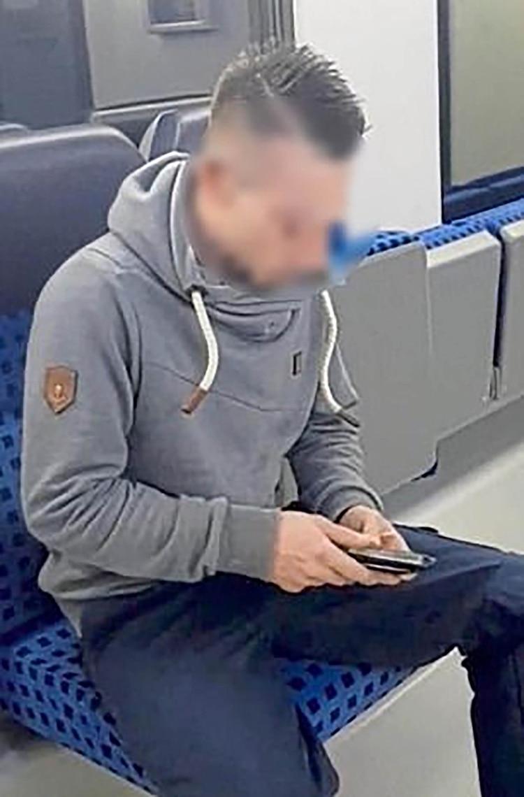 """Aparentemente fueron grabados en trenes regionales en Sajonia-Anhalt, en el este de Alemania, y después publicados en un sitio porno con el título: """"Atrapado en el tren de Lady Ashley"""" (Foto: especial)"""