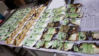 Una imagen proporcionada por el Banco de Corea el viernes 31 de julio de 2020 muestra los billetes dañados tras ser calentados en microondas en Corea del Sur (Banco de Corea a través de AP)