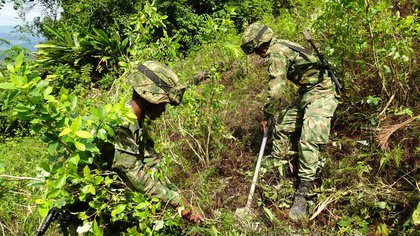 Foto de archivo. Soldados del Ejército Nacional erradican cultivos de hoja de coca en zona rural de Tarazá, en el departamento de Antioquia, Colombia, 10 de septiembre, 2019.  REUTERS/Luis Jaime Acosta