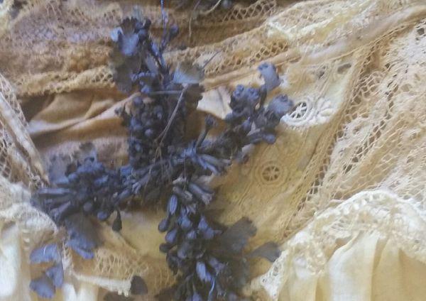 Misterio: una nena fue hallada intacta en un ataúd cubierto de rosas