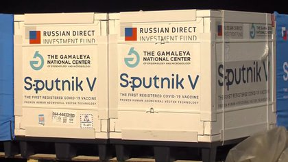 llegaron 500 mil dosis de vacuna rusa sputnik V