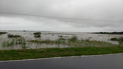 Hay miles de hectáreas de campos inundados en el interior del país (Sociedad Rural Argentina)