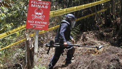 En más de la mitad de los municipios de Colombia hay minas antipersonales plantadas El Colombiano 163