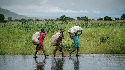 Los niños deben caminar 10 kilómetros para llegar al pueblo más cercano de Kayembe, donde van al colegio
