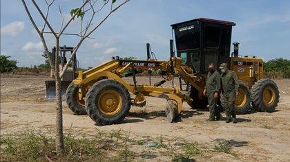 La tala ilegal en la Reserva de la Biósfera de la Mariposa Monarca es la causa principal de la reducción de su población esta temporada. (Foto: Archivo)
