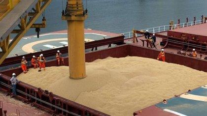 Los exportadores de cereales, otra vez en el centro de la escena