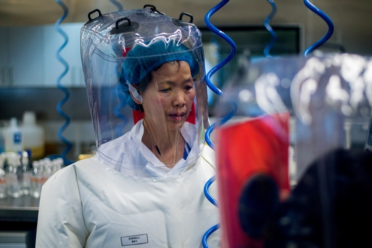 Shi Zhengli, una de las principales expertas chinas en coronavirus de murciélago y vicedirectora del laboratorio de Wuhan (JOHANNES EISELE / AFP)