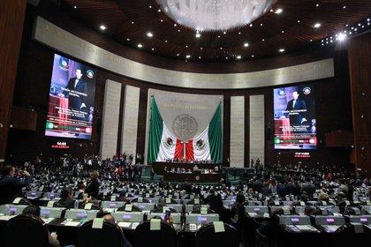 Las reservas realizadas incluso por diputados de Morena se discutirán en el Pleno (Foto: Mario Guzmán/ EFE)