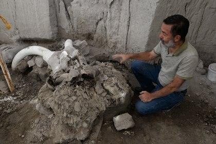 """Gracias a las excavaciones sistemáticas emprendidas en años recientes por el Instituto Nacional de Antropología e Historia (INAH) en cercana colaboración con las autoridades locales, revelo que la zona mexiquense fue ante todo y continúa siendo """"Tierra de mamuts"""" lo cual esta modificando el panorama de los estudios de la Prehistoria de América FOTO: INAH /CUARTOSCURO"""