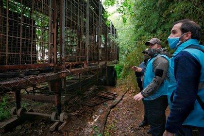 Los dueños del zoológico de Luján son investigados por tráfico de fauna.