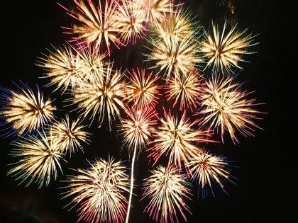 El momento más traumático para los perros es el momento en el que los fuegos artificiales iluminan el cielo.