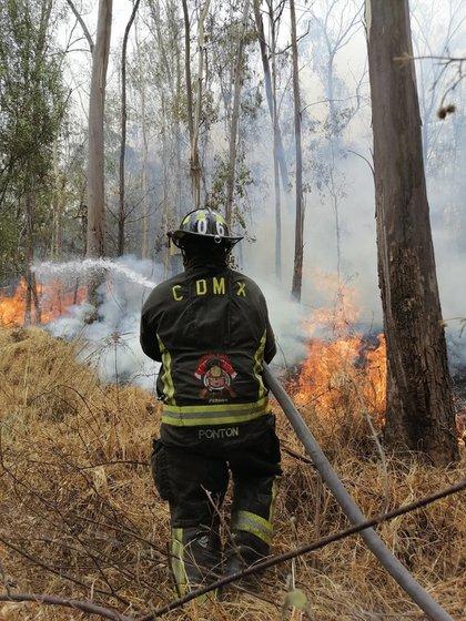 Altas temperaturas provocan incendios (Foto: Twitter @Bomberos_CDMX)