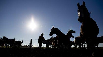 Cabalgatas en San Antonio de Areco, una de las actividades más realizadas  (AP)