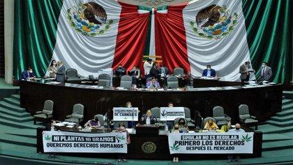 Las mantas, los cigarros y los paquetes de marihuana se hicieron presentes en San Lázaro este miércoles (Foto: Cuartoscuro)