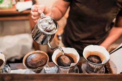 El aumento del área dedicada a este producto no necesariamente se traduciría en un mejor café (Foto: Shutterstock)