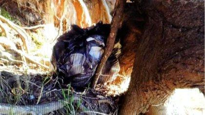 Así encontraron la mochila de Navila Garay, junto a un árbol y envuelta en una bolsa de nylon azul