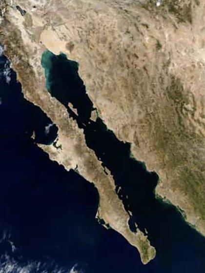 La zona en la que realiza la pesca ilegal de totoaba