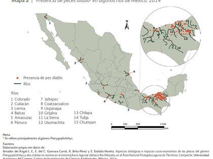 Las zonas en México donde se les ubica