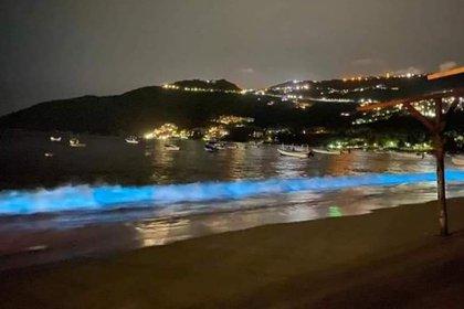 La bioluminiscencia ilumina de color turquesa el romper de las olas en la playa de Puerto Marqués (Foto: Twitter@EdberdMolina)
