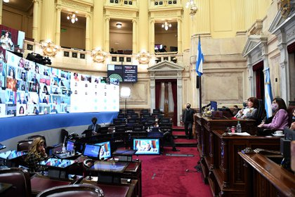 El Senado volvió a sesionar de forma remota. (Celeste Salguero / Comunicación Senado)