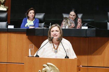 La senadora panista pidió que Sandoval aclare el tema con una auditoría de su evolución patrimonial (Foto: Twitter @XochitlGalvez)