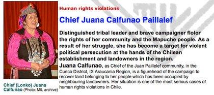 """La organización de Bristol, Reino Unido, tutela los derechos humanos en lo los """"territorios mapuches"""""""