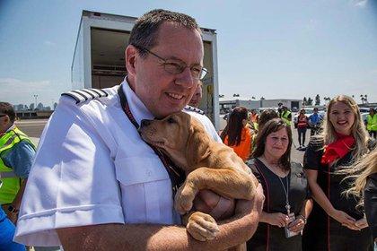Rescate de mascotas luego de la catástrofe del Huracán Harley(Twitter/Southwest Airlines)