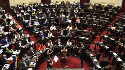 """En la sesión del 13 de noviembre pasado, los diputados aprobaron un repudio al """"golpe de Estado"""" en Bolivia (Maximiliano Luna)"""