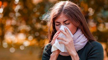 Entre el 70% y 90% de los pacientes el asma responde a causas alergénicas (Shutterstock)