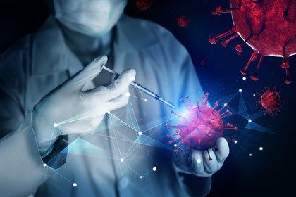 Para la doctora Gold no es impensado en un futuro próximo combinar una terapia con suero equino y una vacuna contra el virus SARS-CoV-2 (Shutterstock)