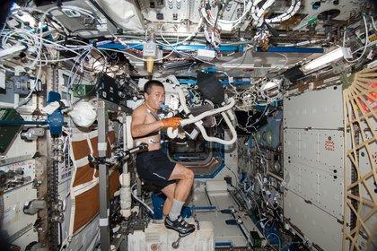 La vida de los astronautas en el espacio debe parecerse a la de la Tierra, con sus rutinas de ejercicios y trabajo diario