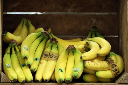 Bananas are displayed in a crate at a shop specialising in organic food and natural products in Halle, Belgium May 12, 2020. Picture taken May 12, 2020. REUTERS/Yves Herman