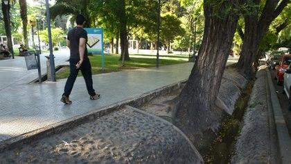 La ciudad de Mendoza trabaja en el modelo de biodiseño urbano para disminuir el calor en la ciudad. Foto: Fernando Calzada.