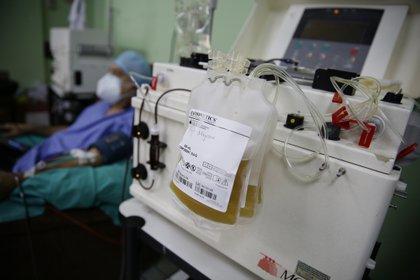 Fotografía realizada el 30 de junio de 2020, de un laboratorista clínico que trabaja en la extracción de plasma de la sangre de un donante recuperado de Covid-19, en el hospital Benjamín Bloom, en San Salvador. EFE/Rodrigo Sura