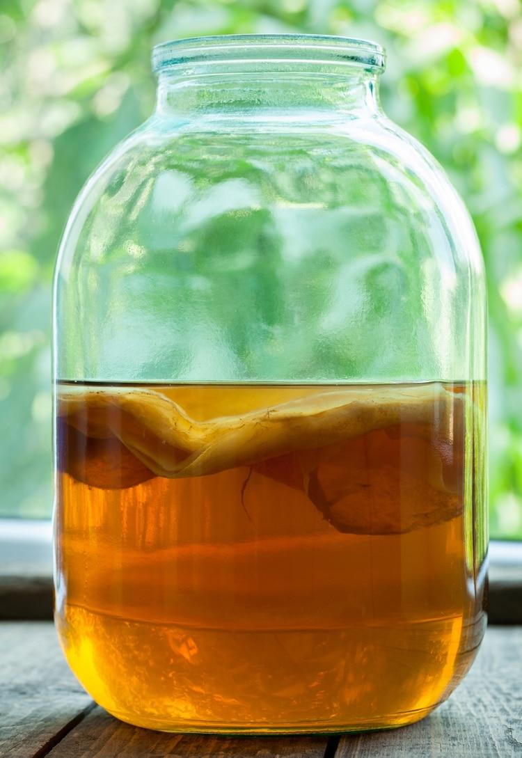 El té de kombucha se produce a partir de un importante cultivo de bacterias (iStock)