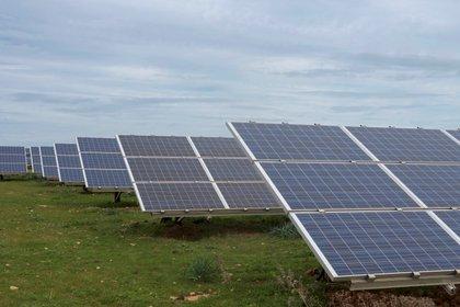 Greenpeace aclaró que no defiende a las empresas de energías limpias, sino el derecho ambiental de los ciudadanos (Foto: David Arquimbau/ EFE)
