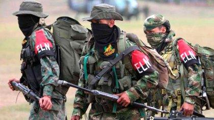 Guerrilleros del grupo terrorista ELN