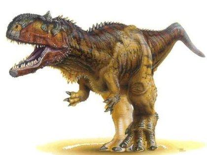 Los restos fósiles hallados en la localidad rionegrina de General Roca pertenecen a la familia de los abelisáuridos