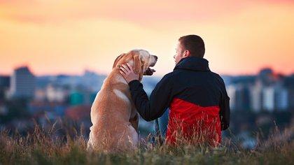 El estudio propone que la comunicación entre animales y humanos tiene algo en común: la toma de turnos (Getty Images)