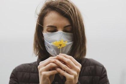 Debido a que la pérdida del olfato es un síntoma común, los neurólogos se preguntaron si el nervio olfatorio podría proporcionar una vía de entrada (Europa Press)