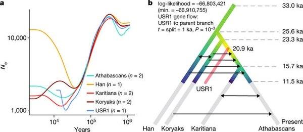La variación genética de USR1