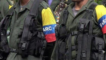 Las FARC se apoderaron de Apure, denuncian pobladores de la zona