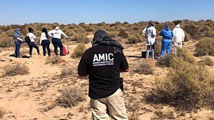 Las madres buscan a sus familiares desaparecidos (Foto: Fiscalía de Sonora)