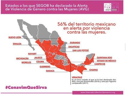 En estos estados se encuentra formalmente declarado en Alerta de Violencia de Género contra las Mujeres (Foto: Facebook OCNFeminicidio México)
